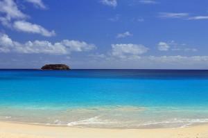 St_Barths-Saline_Beach
